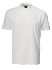 Picture of T-shirt (195gsm)