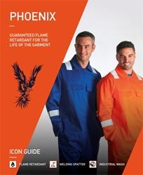 Phoenix leaflet 2016